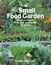 The Small Food Garden cover image