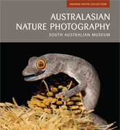 The cover image of Australasian Nature Photography, featuring a grey lizar