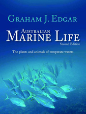 Cover is a school of fish in bright pale blue fading into darker blue.