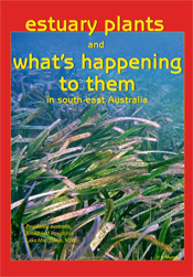 cover of Estuary Plants and What's Happening to them in South-East Austra
