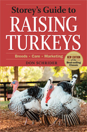 cover of Storey's Guide to Raising Turkeys