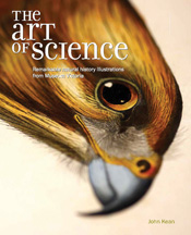 cover of The Art of Science