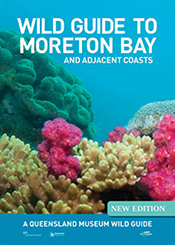 cover of Wild Guide to Moreton Bay and Adjacent Coasts