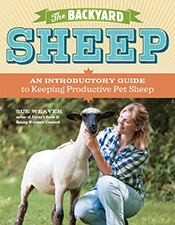 cover of The Backyard Sheep