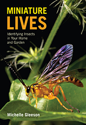 Miniature Lives cover image