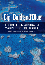 Big, Bold and Blue cover image
