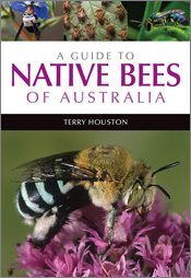 Guide to Native Bees of Australia