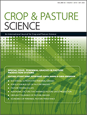 cover of Perennial Grasses in Pasture Production Systems