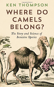 cover of Where Do Camels Belong