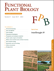 cover of InterDrought IV