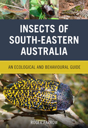 Cover featuring images of an assortment of insects.