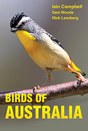 Cover image of grey and yellow bird with plain blurred gray background.