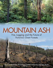 Cover of Mountain Ash, featuring a photo of a lush forest and a photo of a