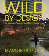 Cover is a woman walking in a wild looking urban park with a large skyscra