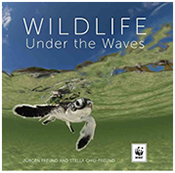cover of Wildlife Under the Waves