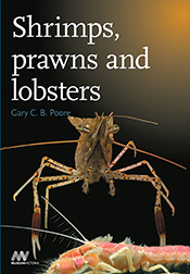 cover of Shrimps, Prawns and Lobsters