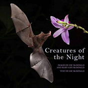 cover of Creatures of the Night