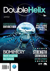 Double Helix Volume 1, Issue 2