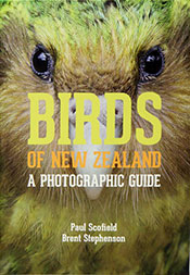 Cover image features a close-up photograph of Kakapo bird.
