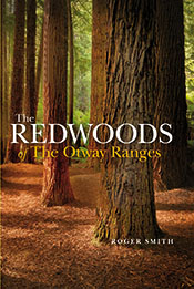 Redwoods of the Otway Ranges