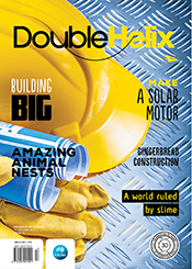 cover of Double Helix Issue 13