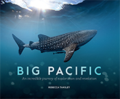 Cover with underwater image of whale shark swimming in ocean