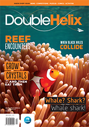 Cover of magazine with clown fish swimming in anemone.