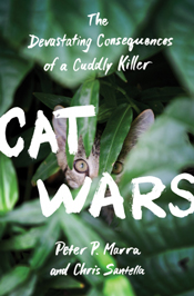 Cat Wars cover image