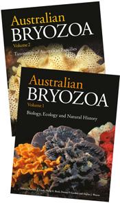 Australian Bryozoa Set