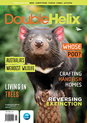 Double Helix Issue 26