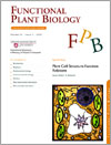 Plant Cell: Structure-Function Relations