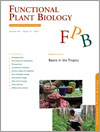 RESEARCH FRONT: Beans in the Tropics