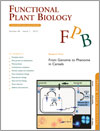 From Genome to Phenome in Cereals cover image