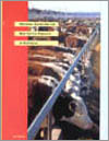 The cover image of National Guidelines for Beef Cattle Feedlots in Austral