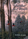 cover of Feather and Brush