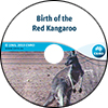 Birth of the Red Kangaroo