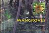 Australia's Mangroves cover image
