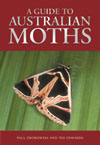 Guide to Australian Moths