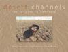 Desert Channels cover image