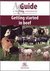 Getting Started in Beef