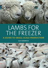 Lambs for the Freezer