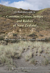 Illustrated Guide to Common Grasses, Sedges and Rushes of New Zealand