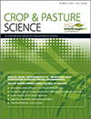 Interdrought IV – Improving Crop Adaptation to Water-limited Environments