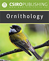 Ornithology Brochure