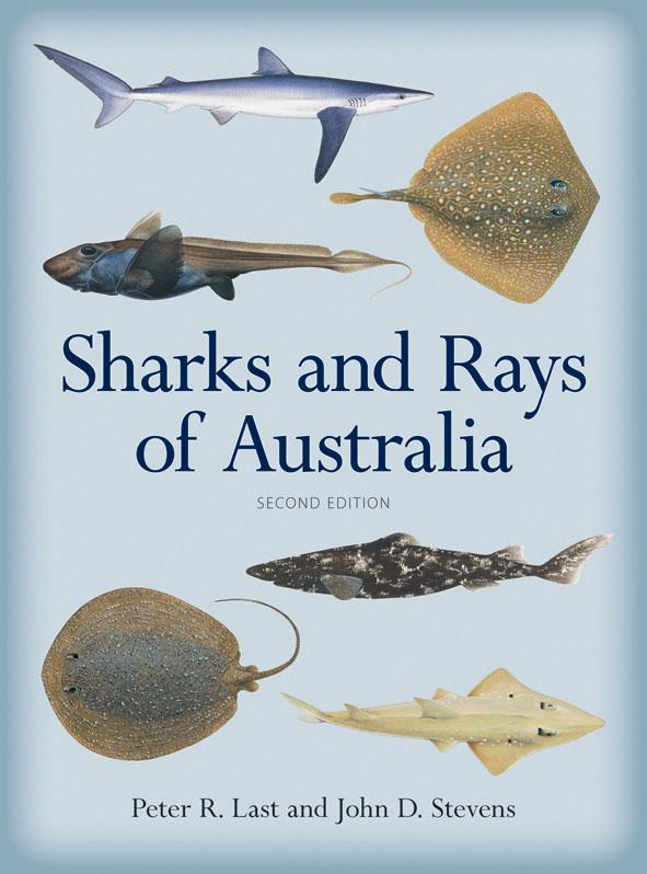 sharks and rays of australia peter r last john d stevens
