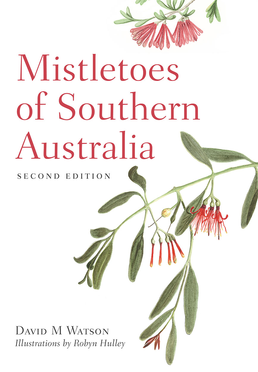 Image result for mistletoes of southern australia